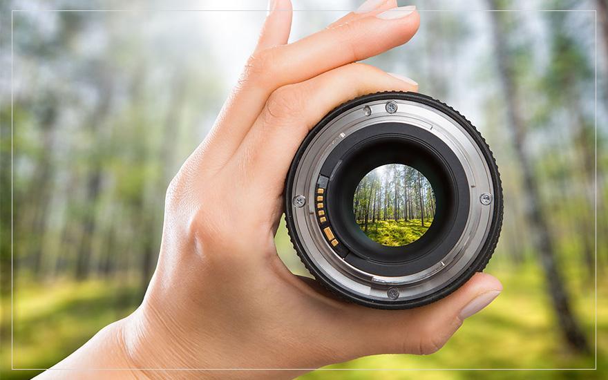 Natura widziana przez obiekty fotograficzny